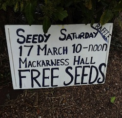 Honiton Seedy Saturday