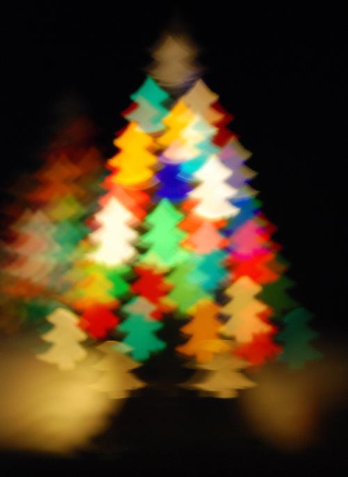 Christmas Activities Honiton 2013