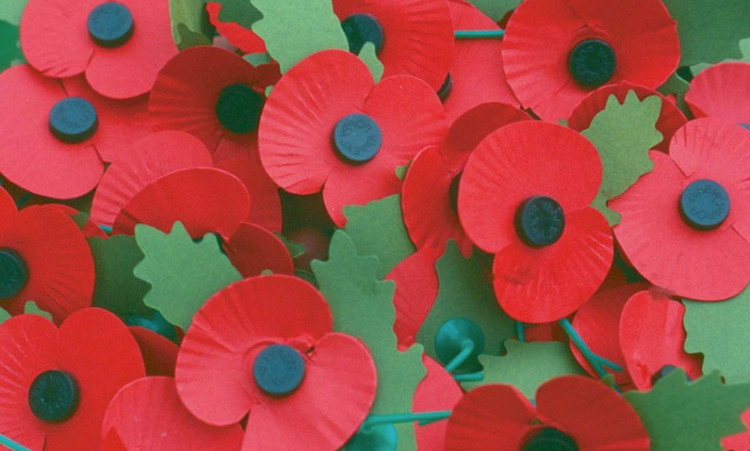 Remembrance Day Events in Honiton